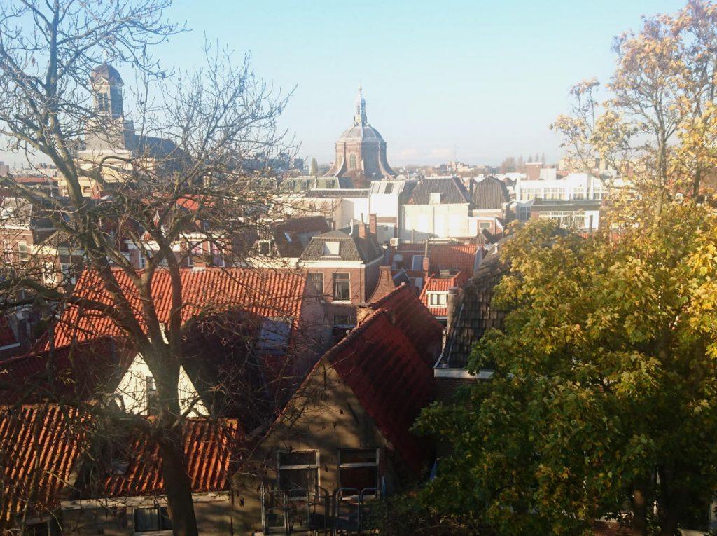 Burcht van Leiden fuerte leiden vista